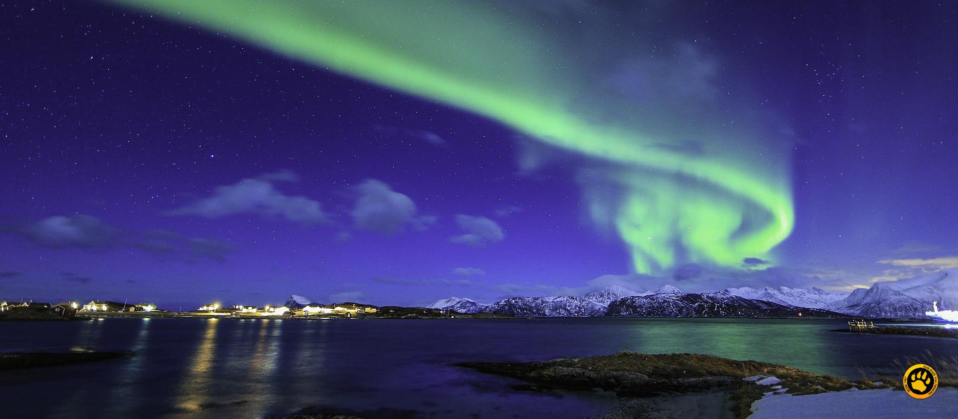 Noruega: Conheça a Terra de Vikings