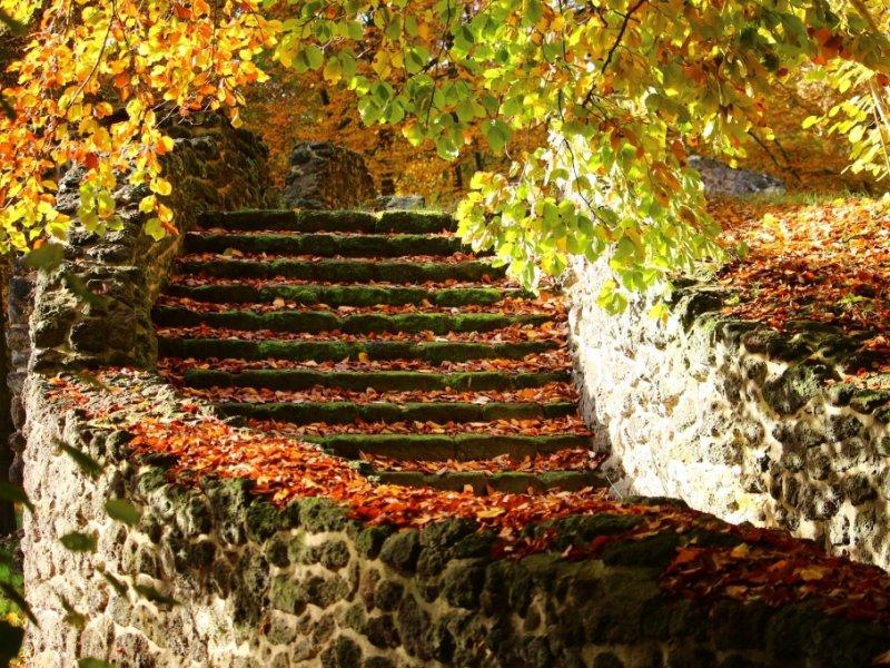 Cores de Outono na Europa