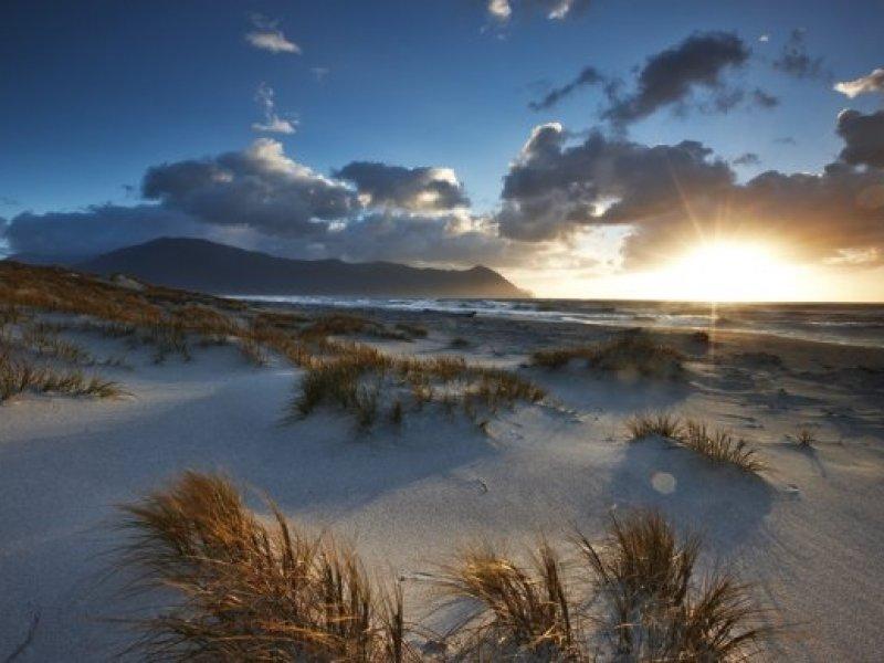 Martin Bay Beach - Trekking Valle Hollyford