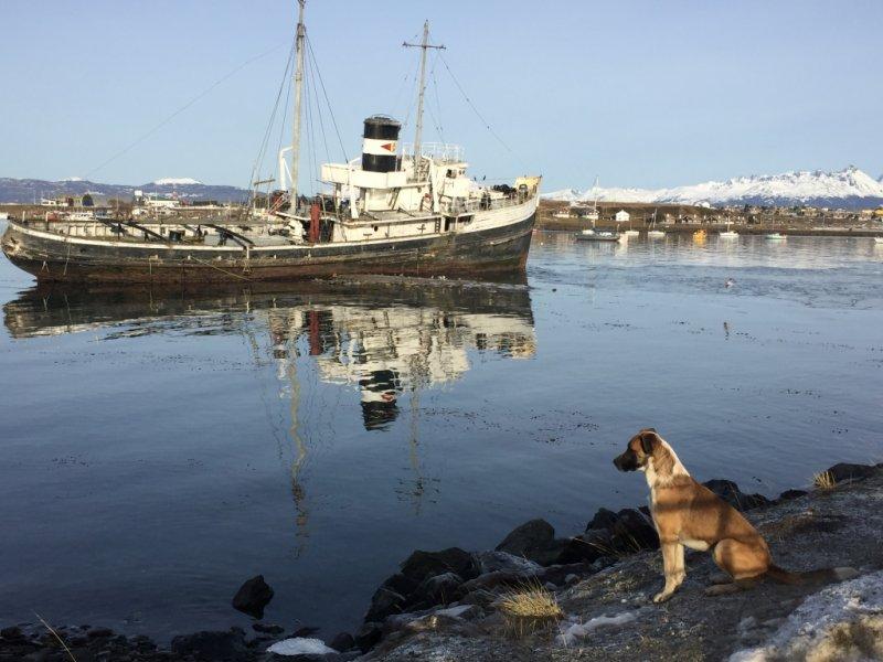 Ushuaia - Canal Beagle