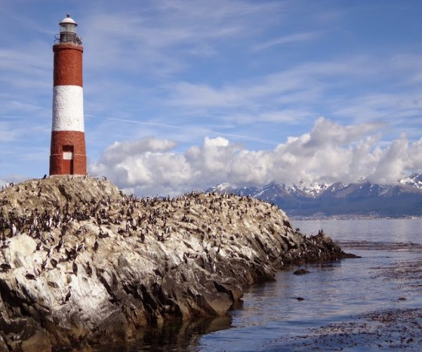 Ushuaia - Ilha Terra do Fogo (Modulo Extensão)
