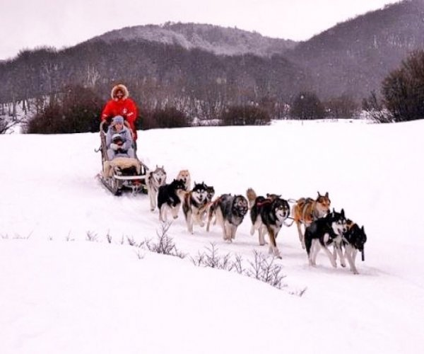 Trenos Puxados por Huskies - Opcional
