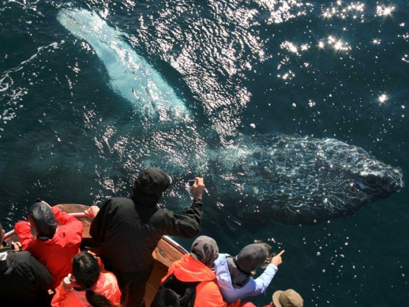 Navegação em Akureyri