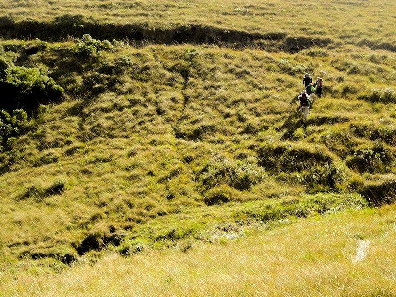 Trekking nos Campos de Altitude
