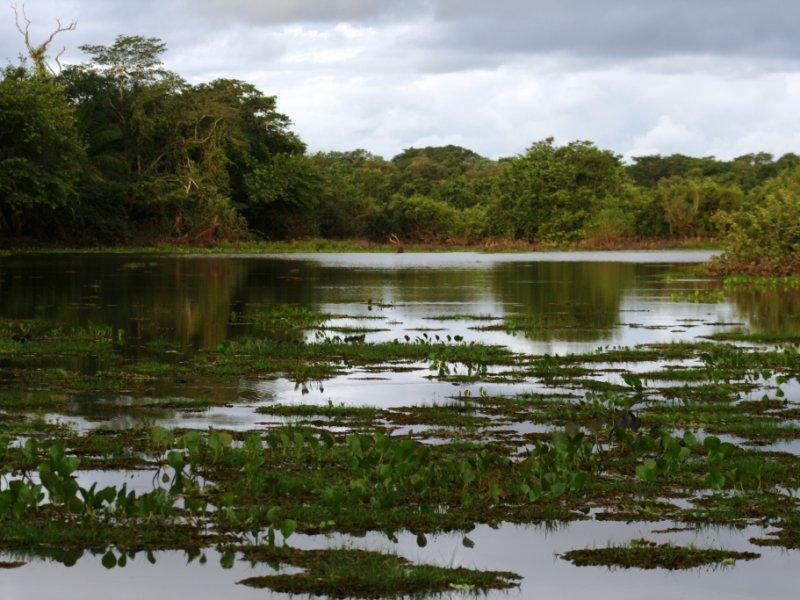 Baía do Rio Aquidauana