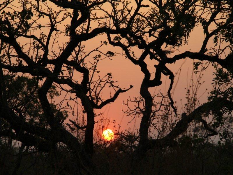 Por do Sol - Chapada dos Veadeiros - foto: Ion David
