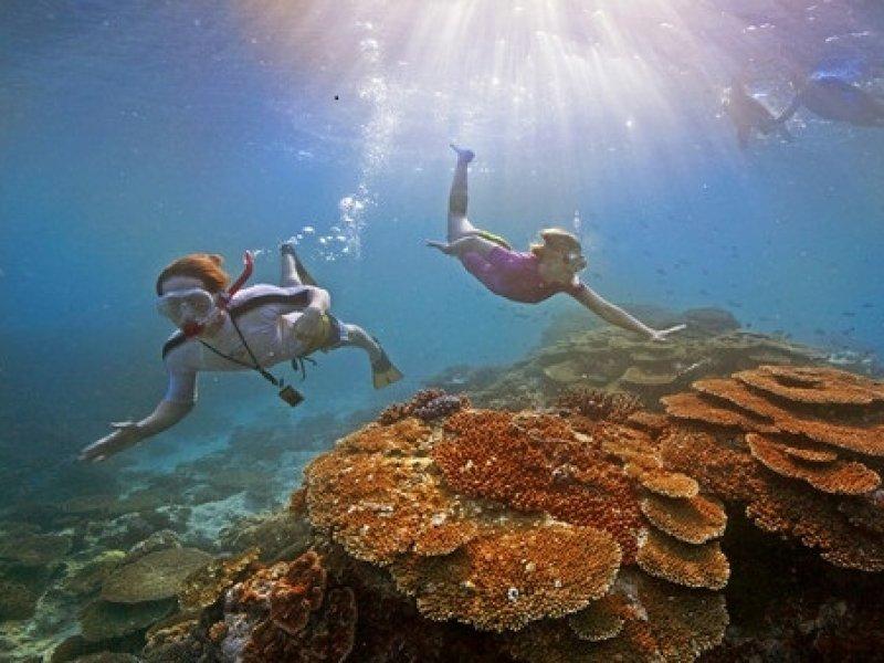 Grande Barreira de Corais - Cairns