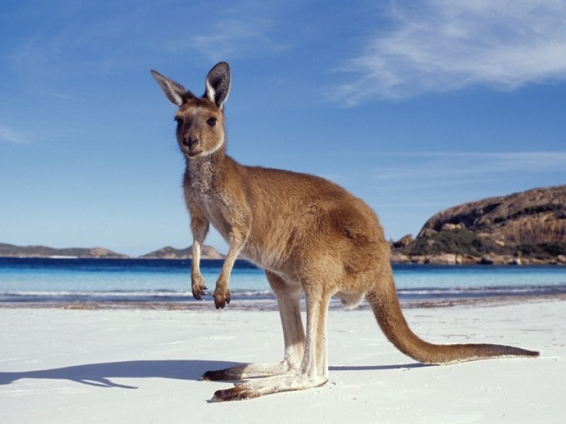 Austrália Paisagens