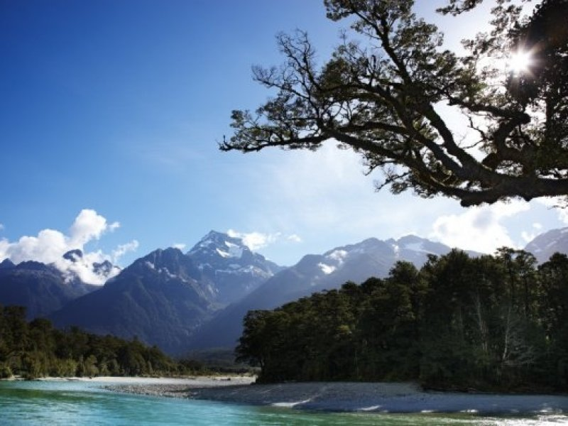 Darran Mountain - Hollyford Rive