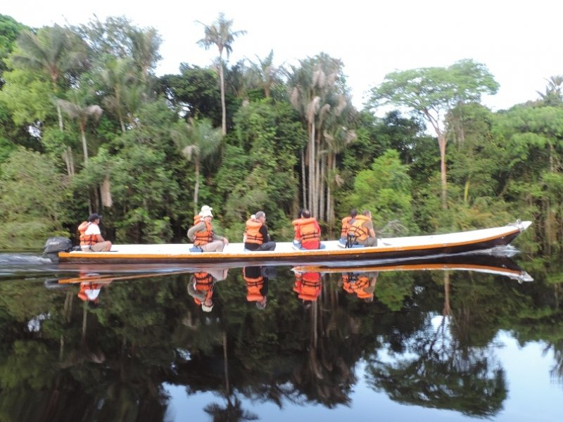 Resultado de imagem para pernoite na amazonia