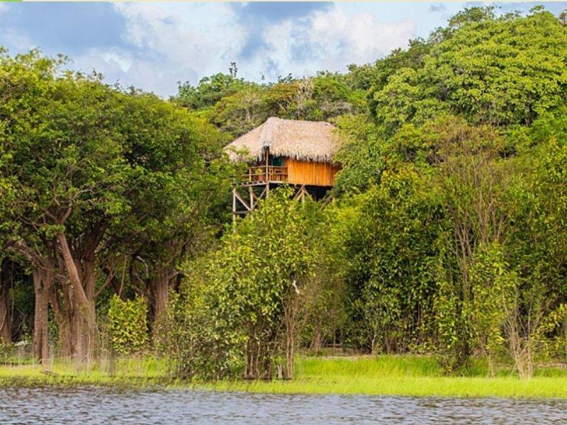 Pacote de Viagem para Hotel Juma Jungle Lodge