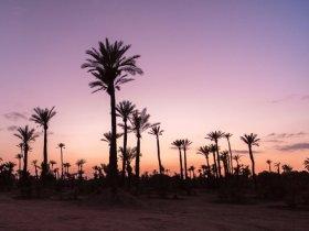 Tesouros do Marrocos