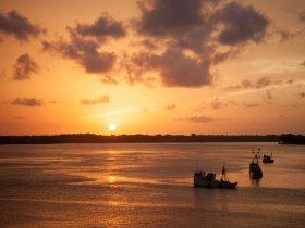 REVEILLON - Pará - Descubra a Ilha de Marajó