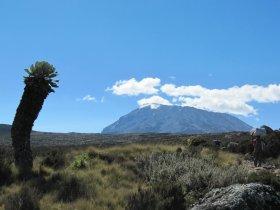 CARNAVAL - Tanzânia - Trekking ao topo do Kilimanjaro com Agnaldo Gomes