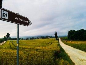 GRUPO OUTUBRO - Itália - Trekking na Toscana Via Francigena