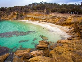 CARNAVAL - Austrália Aventura - Tasmânia Travessia Maria Island
