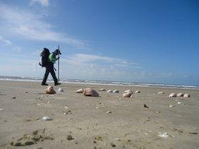 Travessia da Maior Praia do Mundo - Praia do Cassino ao Chuí