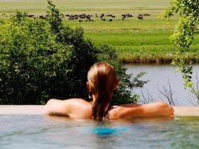 Botswana - Delta do Okavango, Reserva Moremi e Parque Nacional Chobe