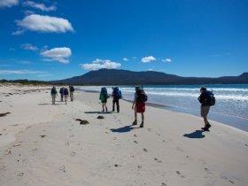 Austrália Aventura - Tasmânia - Travessia Maria Island