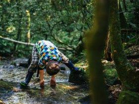 A sensação de liberdade infinita da criança na natureza