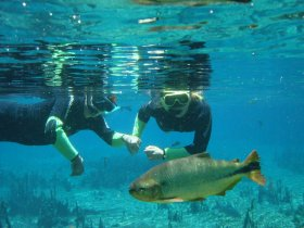 Mergulho em Bonito com Abismo Anhumas