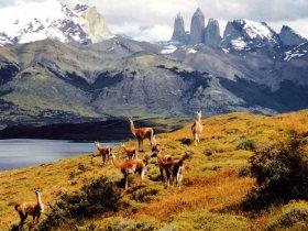 Patagônia Completa - El Calafate e Torres del Paine