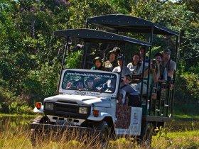 PROMOCIONAL - Pantanal Sul - Fazenda 23 de Março