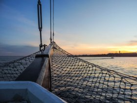 Amazônia - Navegação pelo Rio Negro - M/V Desafio