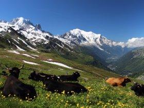França - Trekking Tour du Mont Blanc 360º com Agnaldo Gomes