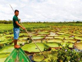 REVEILLON - Alter do Chão - Expedição Fluvial pelos rios Amazonas, Tapajós e Arapiuns