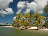 CARNAVAL - Península de Maraú - Lagoa do Cassange