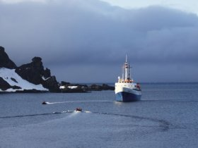 Cruzeiro na Antártica - Navio MV Ushuaia, Ilhas Falklands(Malvinas) e Ilha Geórgia do Sul